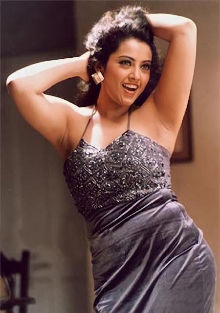 Actress Meena Hottest