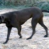 Celeste on 11/3/2012
