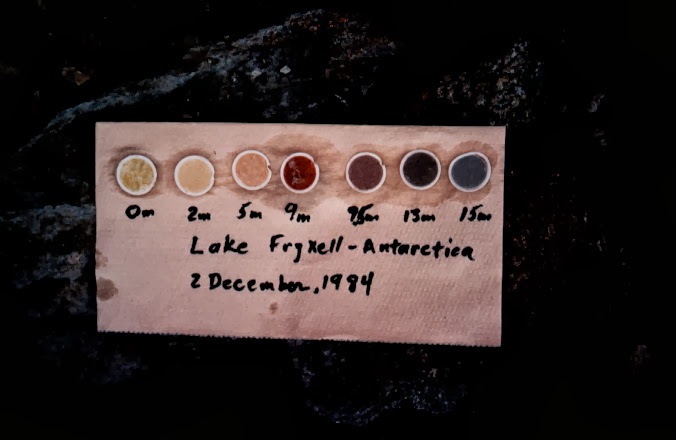 Particulate matter from Lake Fryxell on GF/F filters, 1984.