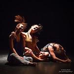 Entrez dans la danse 2015 s-43.jpg