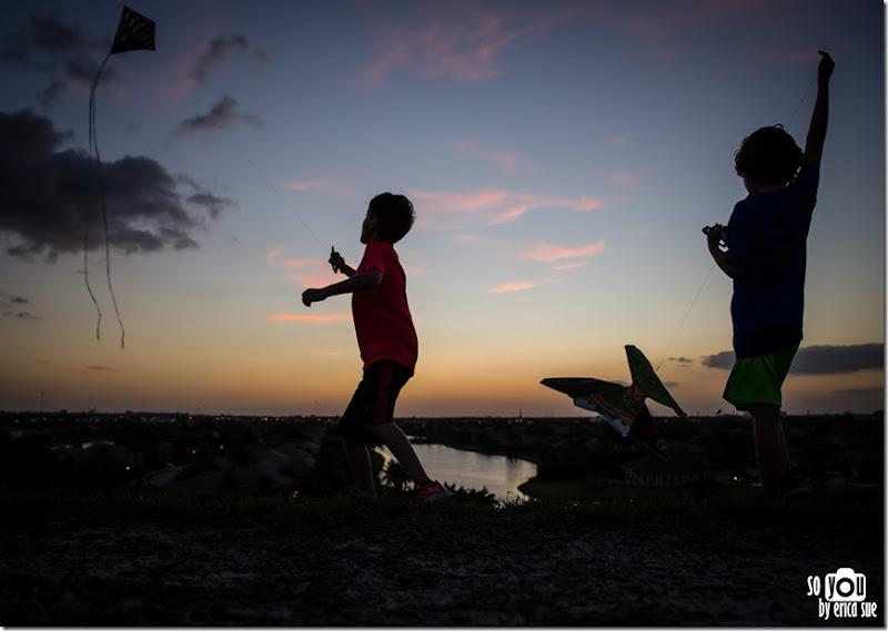 Kite Sunset silhouette-8706