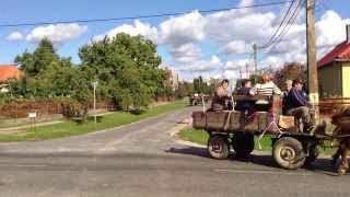 Szüreti felvonulás Jákó 2013.09.21. - Vonul a menet
