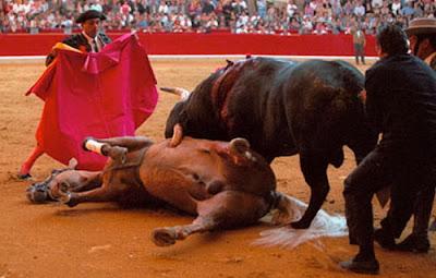 Corrida de toros, corrida, toreo, matador, picador, toreador, CostablancaVIP, Plaza de toros, España, Коста Бланка, коррида, бык, недвижимость в Испании, taurino
