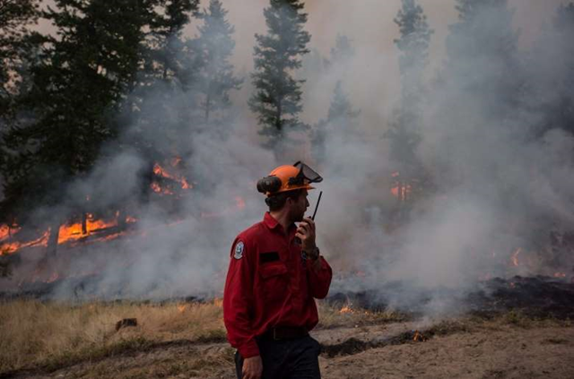 A B.C. Wildfire Service crew member monitors a controlled burn in the Southern Interior, 6 August 2018. Photo: Canadian Press