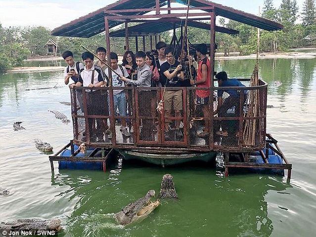 Hinh anh: Theo do nhung buc hinh duoc chup o khu du lich Vuong Quoc Voi o thanh pho Chonburi Thai Lan co canh du khach Trung Quoc cho ca sau an