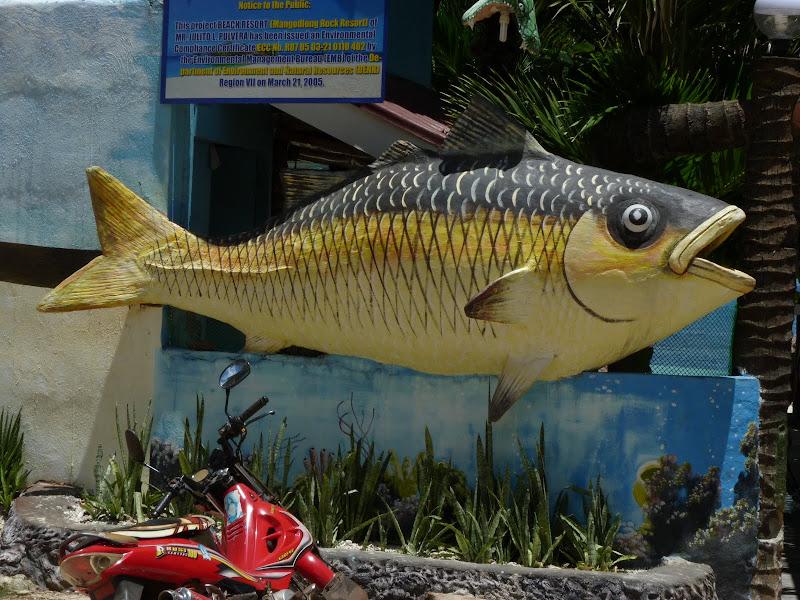 Camotes et Poron island - philippines1%2B887.JPG