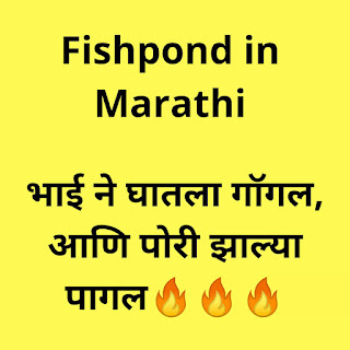 Fishpond in Marathi