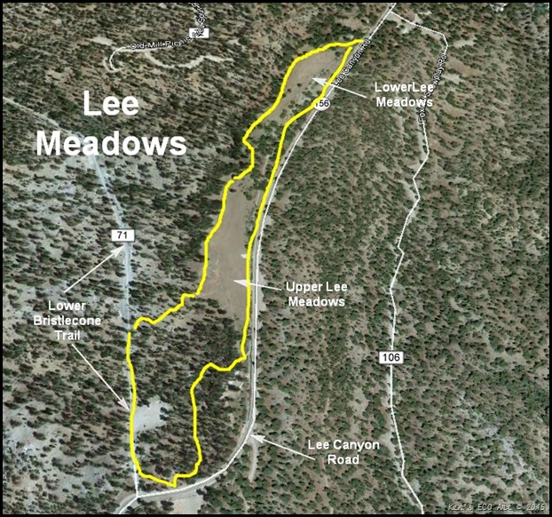 MAP-Lee Meadows-2