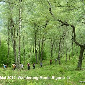 Wanderung Monte Bigorio TI