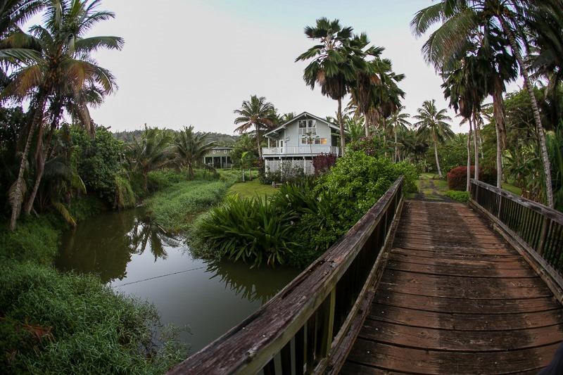 home kauai style-1