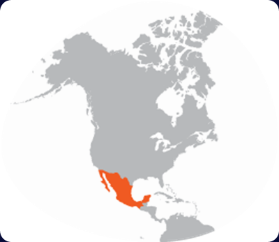 mexico-country-map