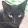 Roc Solo's profile photo