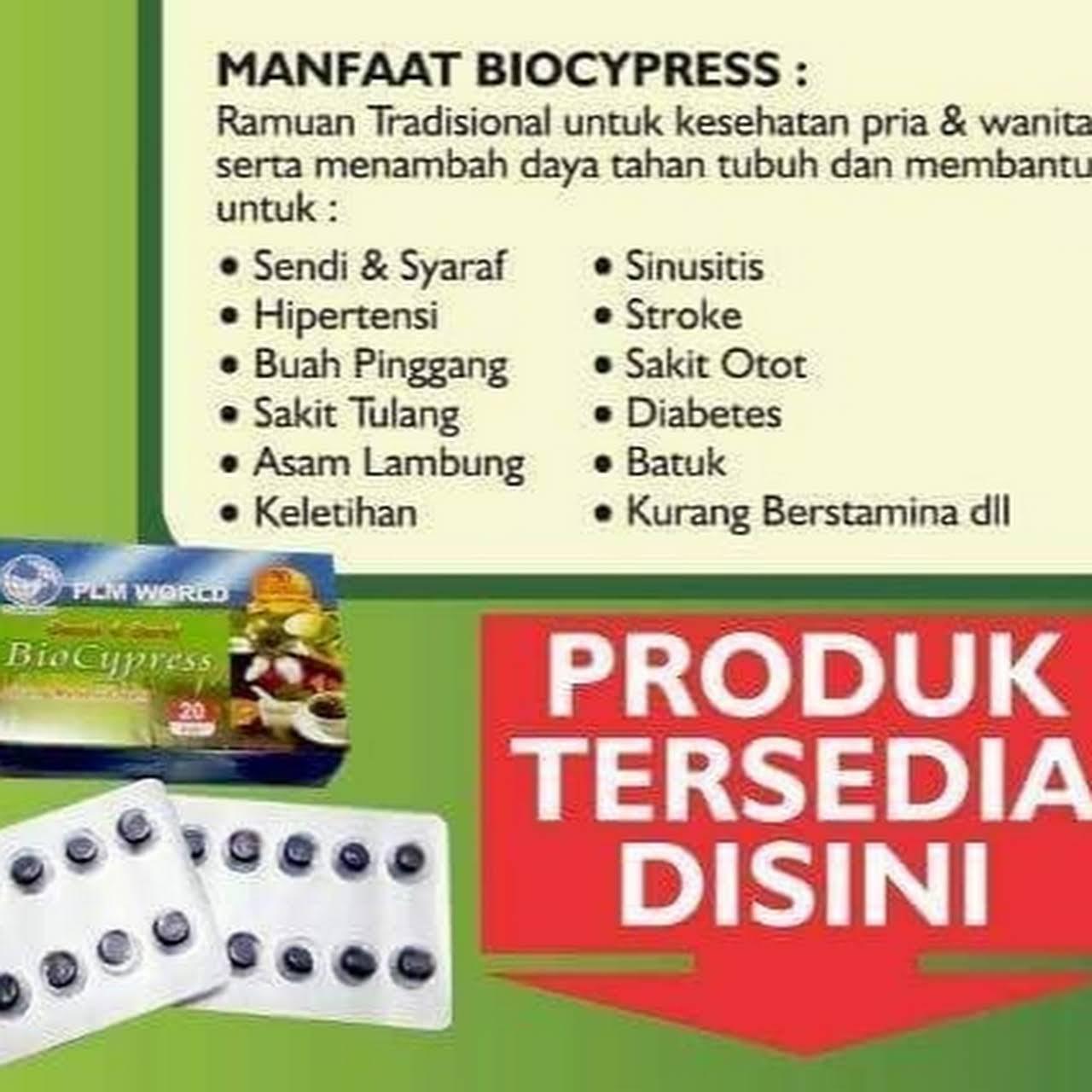Biocypress Distributor Indonesia Toko Obat Obatan Herbal Biocypres Pembaruan