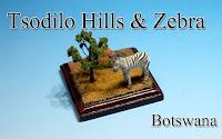Tsodilo hills & Zebra -Botswana-