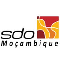 Vaga para Técnico Aduaneiro (m/f)- Maputo
