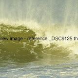 _DSC9125.thumb.jpg