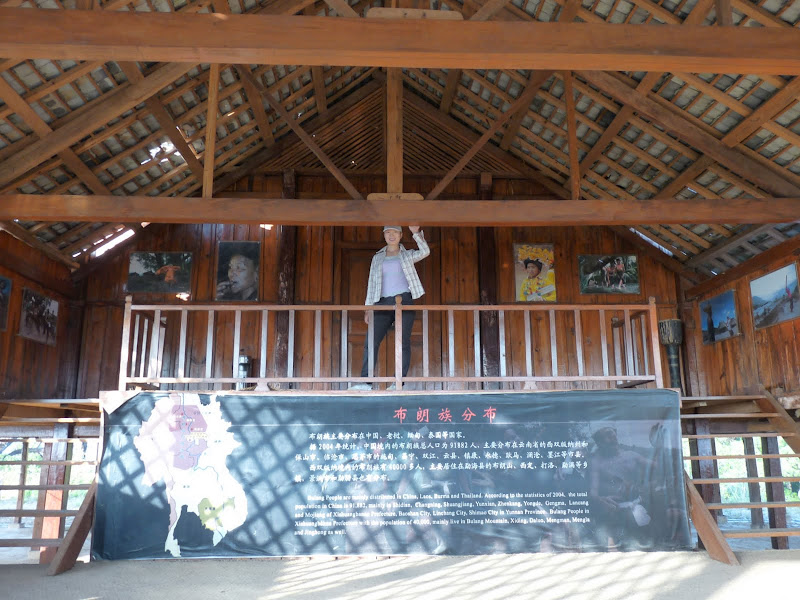 Chine: randonnée xishangbanna, région de Bada - Picture1%2B908.jpg