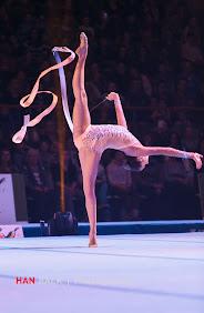 Han Balk Unive Gym Gala 2014-2492.jpg