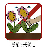 Экологические знаки на разных языках взывают - не рвите цветы, не рвите