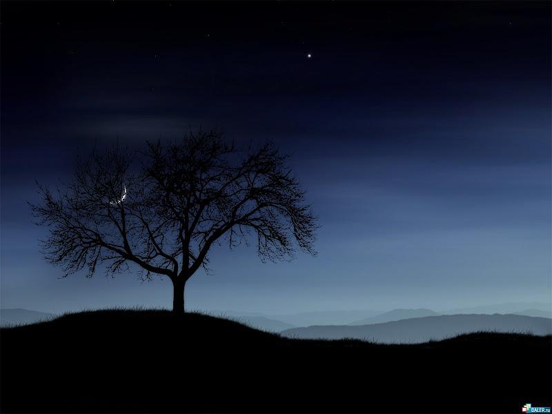 Sorrow Of Lands 6, Magical Landscapes 6