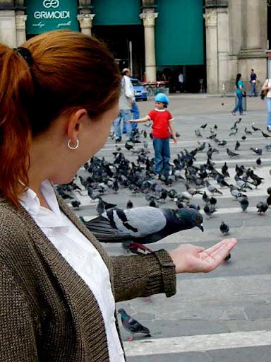 Alimentando a las palomas frente al Duomo de Milán
