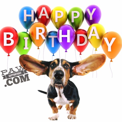 Searches Related To HAPPY BIRTHDAY CARDS Free Birthday Cards Online Images Card With Name For Friends