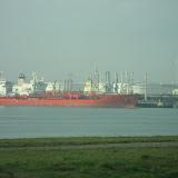 Excursie Rotterdamse haven