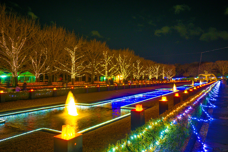 昭和記念公園 Winter Vista Illumination 写真10