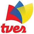 Reglamento Interno de la Oficina de Auditoría Interna, de la Fundación Televisora Venezolana Social TVES