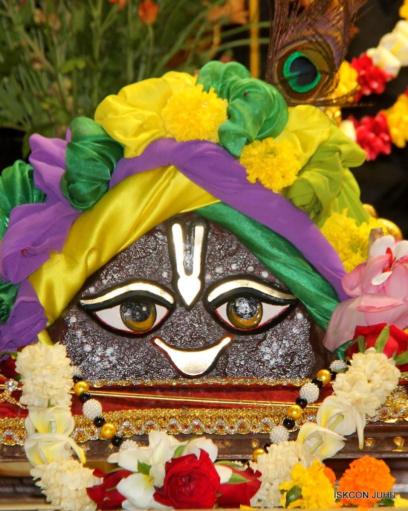 ISKCON Juhu Sringar Deity Darshan on 2nd July 2016 (11)