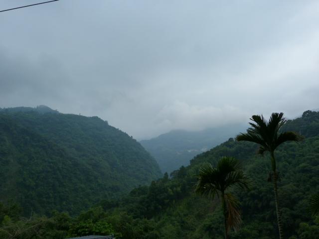 TAIWAN.Hsinchu et une minuscule partie du parc national de Sheipa, l empire du brouillard... - P1070851.JPG