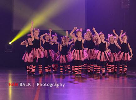 Han Balk Voorster dansdag 2015 ochtend-4048.jpg