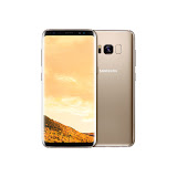 Galaxy S8 Plus Gold (3).jpg