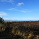 002-Nieuwjaarswandeling met de Bevers.Menno gidst ons door het mooie natuurgebied De Regte Heide te Go+»rle