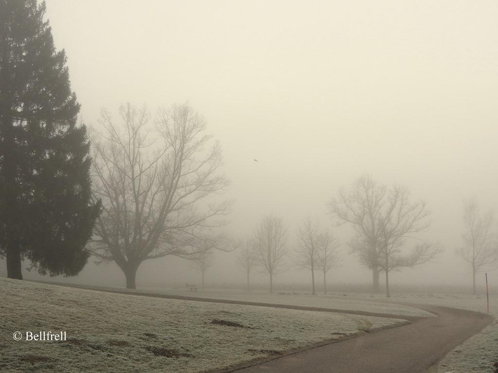 [Aufbruch+im+Nebel+2%5B3%5D]