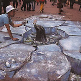 Amazin Chalk - Seal.jpg