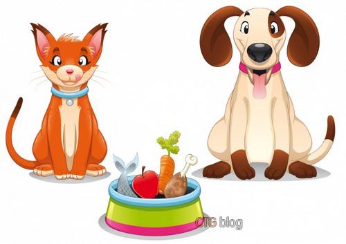 Thức ăn hạt khô cho chó mèo và những điều cần biết