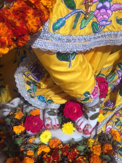 ISKCON Raipur Deity Darshan 03 jan 2017 (4)