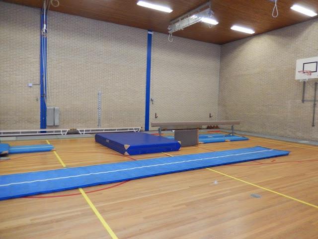 Gymnastiekcompetitie Hengelo 2014 - DSCN3023.JPG