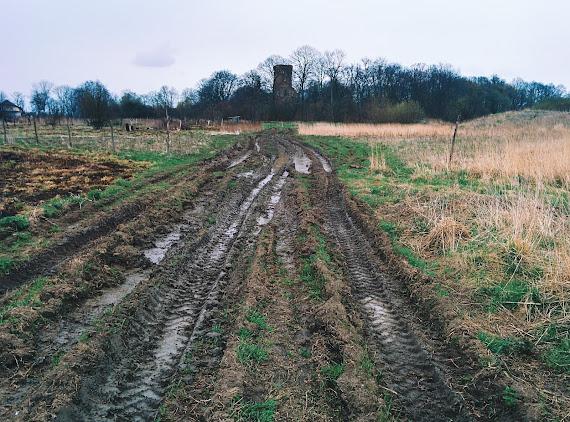 Дорога к Повунденской кирхе через поле