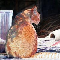 Barn Cat-001.jpg
