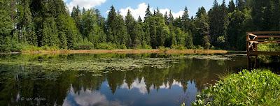 Дикое озеро.jpg