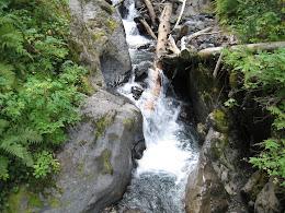Creek on Heliotrope trail.