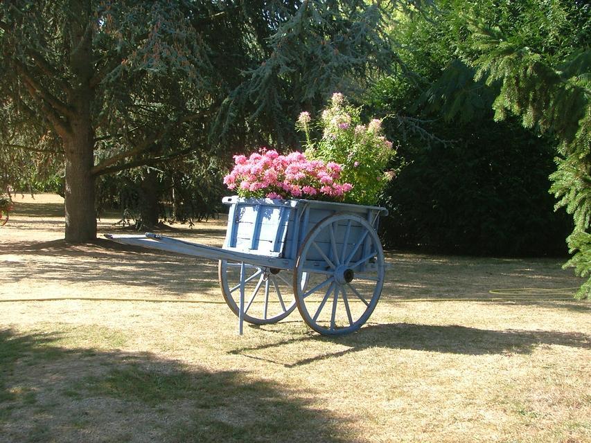 Le parc paysagé - parc_paysage1.jpg