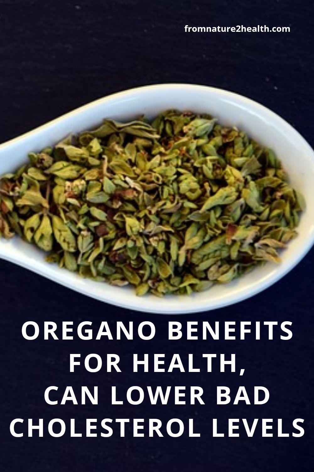 Oregano Benefits For Health, Can Lower Bad Cholesterol Levels