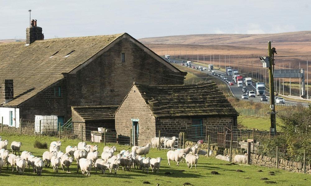 stott-hall-farm-4