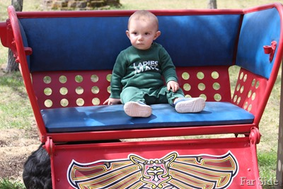 MIkey in the wheel seat