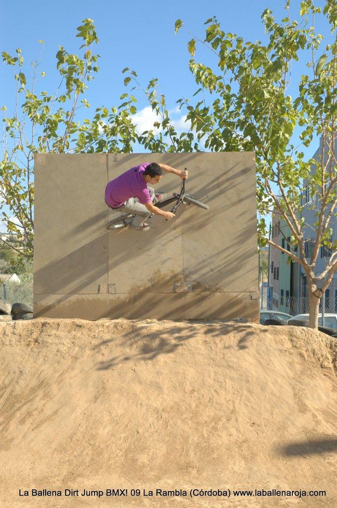 Ballena Dirt Jump BMX 2009 - BMX_09_0030.jpg
