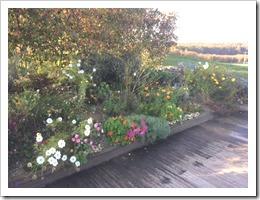 tuin najaar