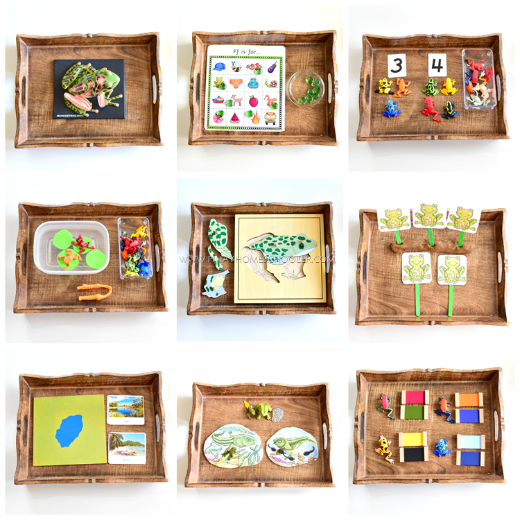 Montessori Inspired Frog Activity Trays for Preschoolers